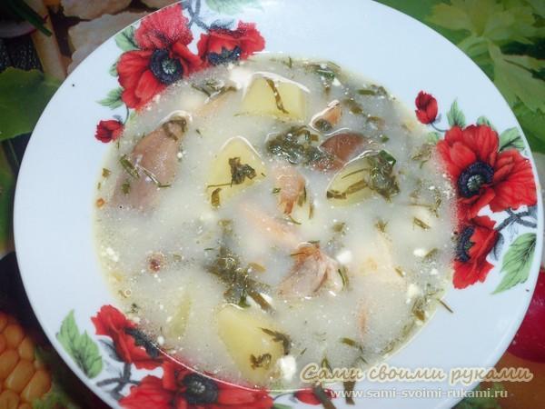 Сырный суп с грибами и щавелём