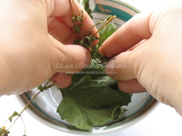 Чай из трав своими руками 70
