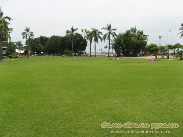 Красивый газон, как сделать своими руками - инструкция, личный опыт