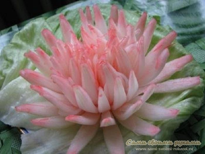 Хризантема из лука, как сделать - фото, мастер класс