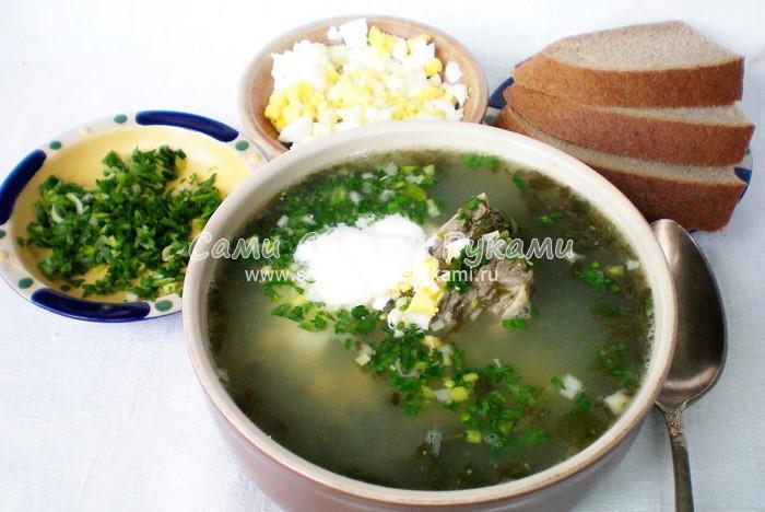 Рецепт зеленого борща из щавеля и шпината