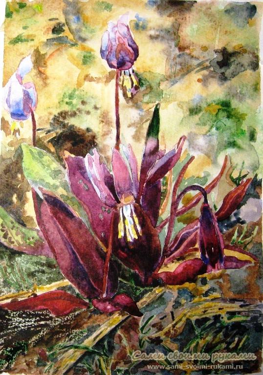 Как писать картины цветов акварелью ...: www.sami-svoimi-rukami.ru/item/1788/kak-pisat-kartiny-tsvetov...
