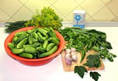 Соленые огурцы - запасаемся на зиму витаминами