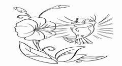 Роспись по батику - мастер класс Колибри