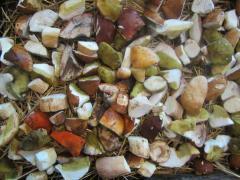 Как сушить на зиму белые грибы