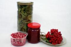 Калина на зиму - рецепт домашней заготовки