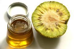 Мазь-бальзам из маклюры (адамово яблоко) от болей в суставах