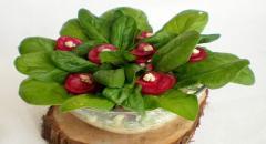 Рецепт салата из редиса, огурца и шпината, оформленного в виде фиалки
