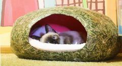 Дом для кошки из папье-маше