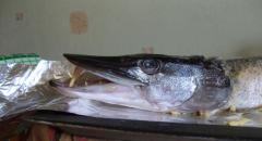 Фаршированная щука, как приготовить в духовке — рецепт с фото