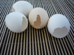 Заливное в яичной скорлупе - рецепт с фото, мастер класс