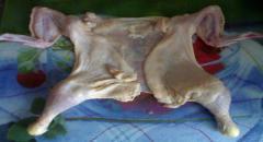 Галантин из курицы - рецепт